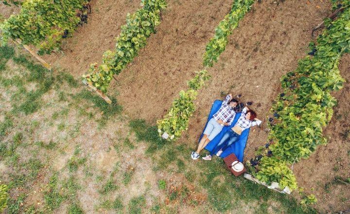 dos personas tumbadas en un viñedo tras realizar una de las rutas de enoturismo
